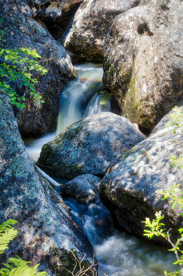 Grizzly Bear Falls 1