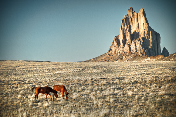 Horses graze near Shiprock, New Mexico. Limited Edition of 250.